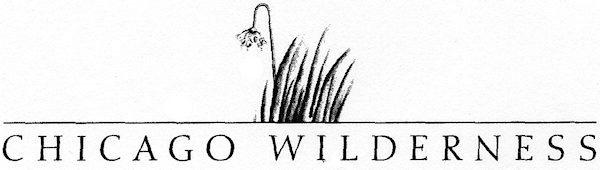 Chi Wilderness logo-sm