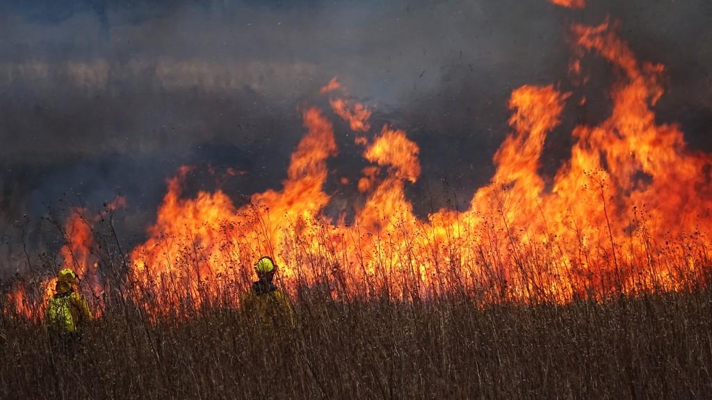 Marsh burn 3-9- 2017 DSC02304 sm